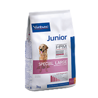 JUNIOR Dog Special Large - Razas medianas y grandes